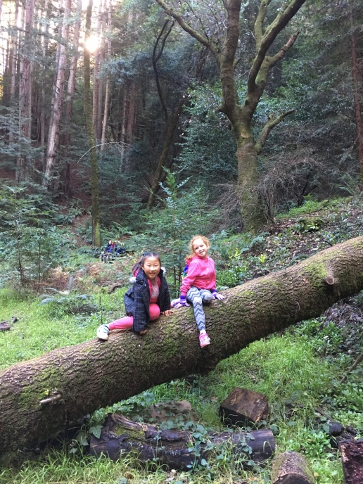 Naya and Ziva Holding down the forest